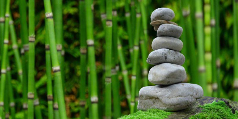 reiki formation toulouse cours stage 31 haute garonne enseignement reiki (7)